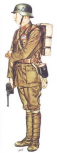 Chinese soldier with a German helmet